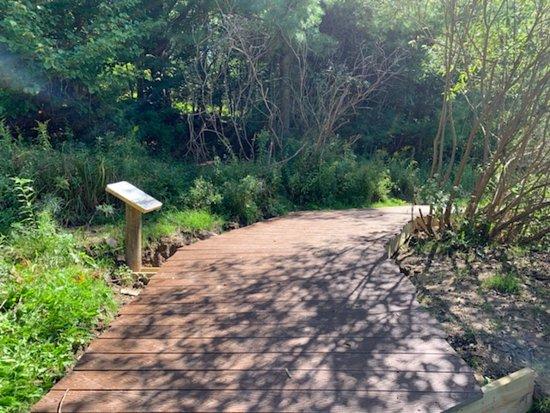 Hancock, NY: Nature trail.