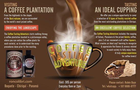 Coffee Tasting Adventure