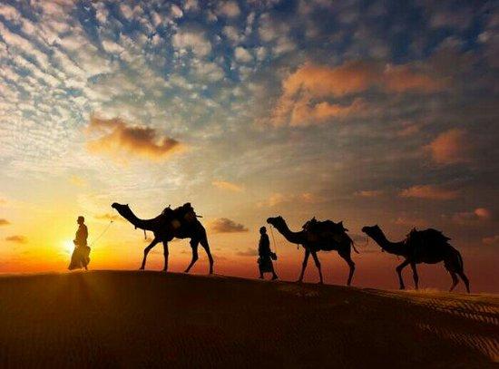 Kapil Thar Desert Camping