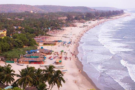 Yo Tours Goa