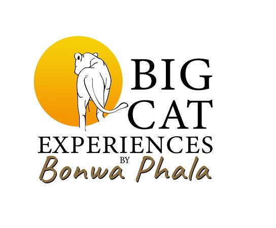 Big Cat Experiences