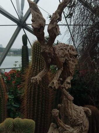 Gardens By The Bay Admission Ticket: Thats some form of Rabbit sculptured out of drift wood or roots its Amazing and the dragon unbelievable