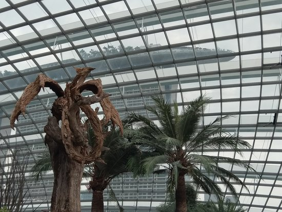 Gardens By The Bay Admission Ticket: Poor shot dragon Amazing art piece
