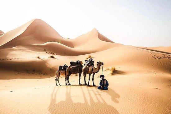 Morocco Upclose