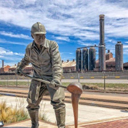 Steelworks Park Bin Man