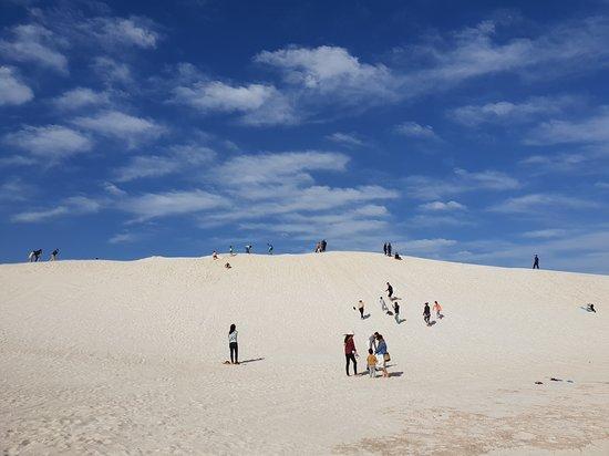 Pinnacles Desert Sunset Stargazing Tour: Sand dunes at Lancelin - sand boarding