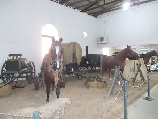 "Some model horses on display as likely part of a ""re-created scene"" of the army in the old days (in the room to the right from the entrance)"