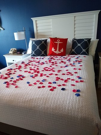Rose petals for our 30th anniversary! What a sweet surprise <3