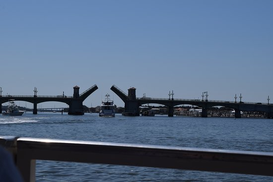 Dolphin Odyssey and Sightseeing Tour: Bridge of Lions going up