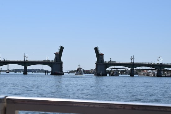 Dolphin Odyssey and Sightseeing Tour: Bridge of Lions