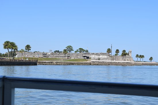 Dolphin Odyssey and Sightseeing Tour: Castillo de San Marcos