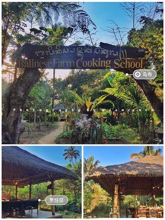 🥘解锁[巴厘岛]的私藏新玩法🌟小众秘境 . 去巴厘岛旅行,还在走传统旅行团路线吗?炎热的天气、拥挤的人群加上长时间排队,巴厘岛是很适合放松的地方,不如去一些小众的景点走走吧🍃 . 我去旅行的首要考虑的因素是:避开旅行团🌟小众玩法🌟够接地气🌟 . 巴厘岛学烹饪的课程是我跟朋友做了将近两个月的攻略,看了无数参考文章之后挖掘出来的小众景点🤪 . 烹饪课程一共会学习5⃣️道菜色: 1⃣️Sayur Urab(蔬菜沙拉) 2⃣️Sweet Sour Tempe(酸甜天贝,一种素肉) 3⃣️Opor Ayam(印式咖喱鸡) 4⃣️BumbuBali/Base Gede(烹饪底料) 5⃣️Bali Sate Lilit(沙爹肉串) 全程英文教学🇬🇧  得益于自小非常喜欢英文,所以可以无障碍交流,当起了临时翻译官😜 . 【体验感受】 我是超爱下厨的人,所以这趟旅行对我来说很有意义🥰 . 旅行,不是走马观花,通过旅行看到不一样的世界和文化☀️ 🥗Baliness farm cooking school 🥗Taro, Tegallalang, Gianyar, Ubud, Bali, Indonesia