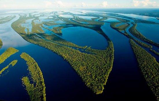 Arquipelago das Anavilhanas - Rio Negro - Amazonia