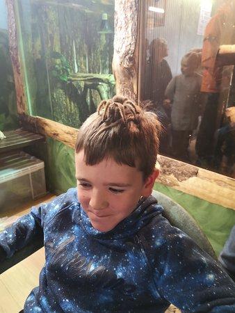 Berwick upon Tweed, UK: Struan with Bob