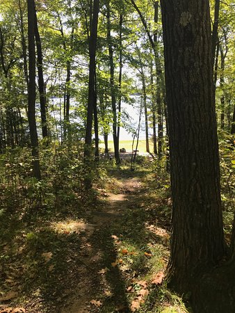 Boulder Junction, WI: A view down the hill towards Tomahawk Lake