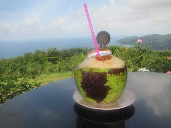 Big Buddha Jungle Trekking with Lunch in Phuket: Refreshing