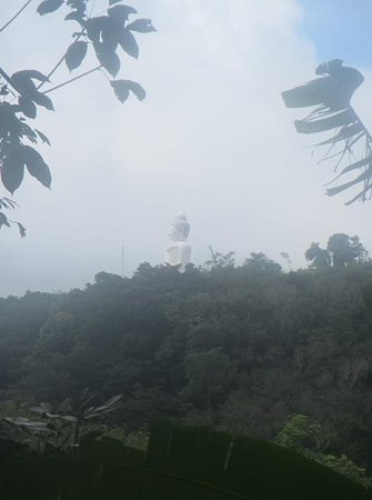 Big Buddha Jungle Trekking with Lunch in Phuket: On the way up