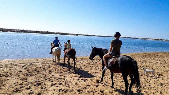 Tavira Equestrian Tourism 2020 Qu 233 Saber Antes De Ir Lo M 225 S