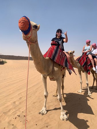 Dubai Self-drive Quad Bike, Sand Boarding, Camel Ride and Refreshments at Camp: -