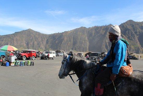 Bromo Horse riding