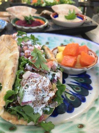 Unique Falafel Pita with Fresh Fruit