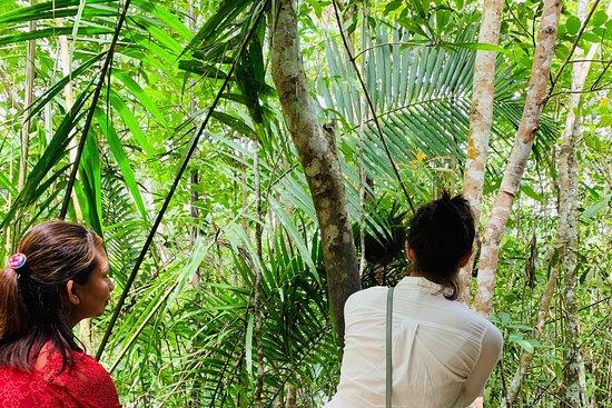 Best Guide in Cebu 4 Experiences in Cebu Island, Mactan ...
