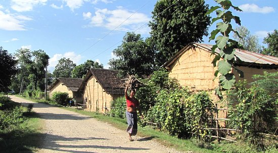 Surrounding village