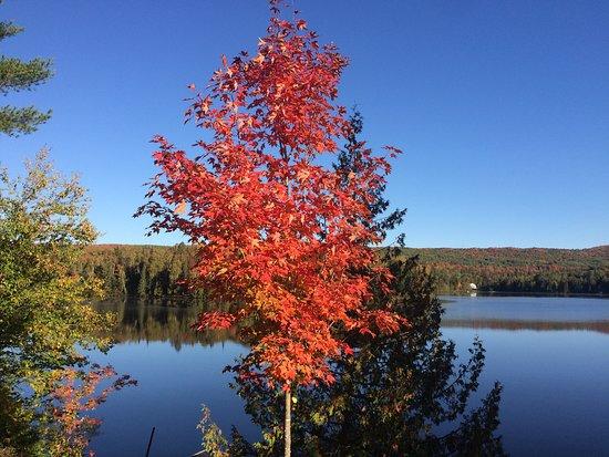 Lac-Saguay, Canada: Les belles couleurs d'automne le matin tôt