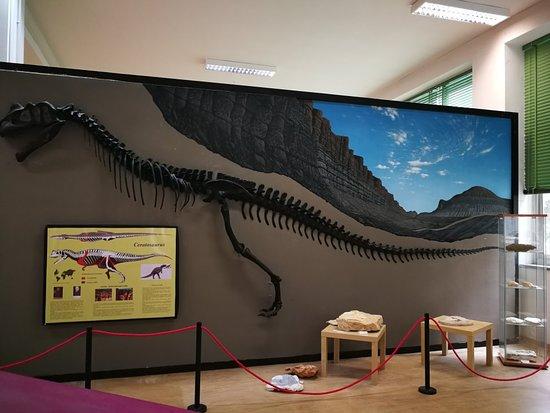 Museo di Scienze della Terra di Bari