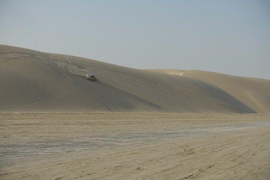 Doha : 4 Hours Private Desert Safari: Hold on scream!