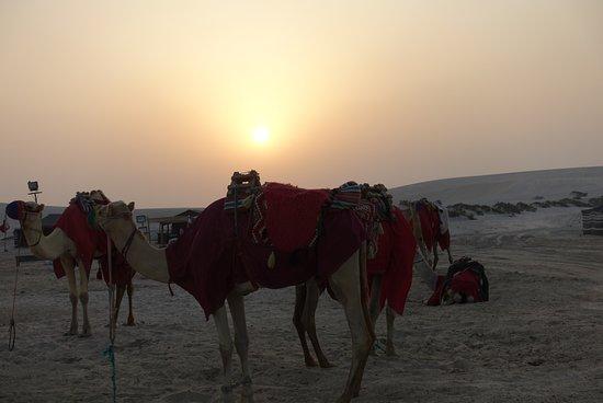 Doha : 4 Hours Private Desert Safari: Sunset