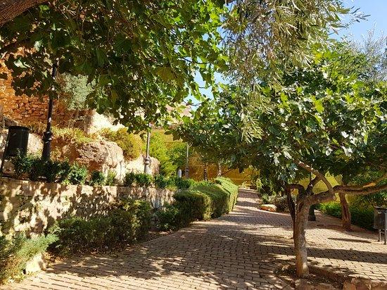 Parque Olivar de la Juderia