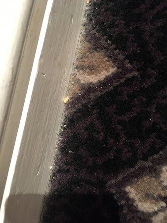 Dirt edge of carpet