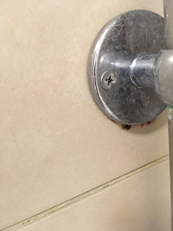 Mould around shower fixings
