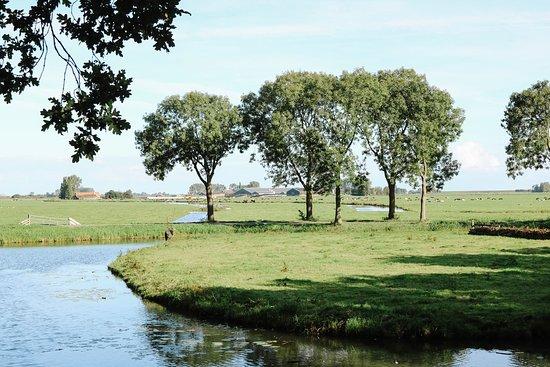 Day Trip to Zaanse Schans, Edam, Volendam and Marken from Amsterdam: Edam