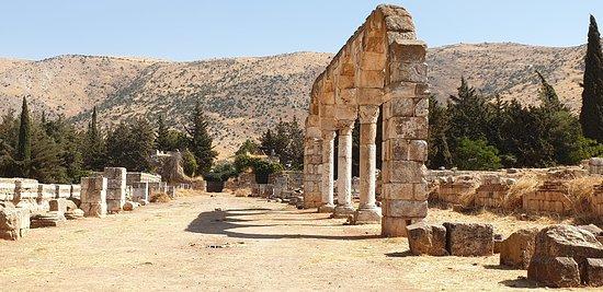 Bekaa Valley: The Main Throughfare, Anjar Roman ruins