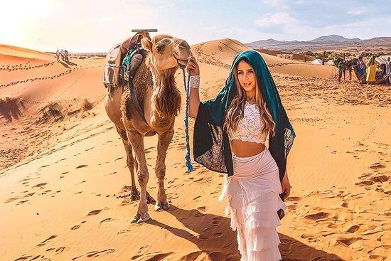 Moroccodaystrip