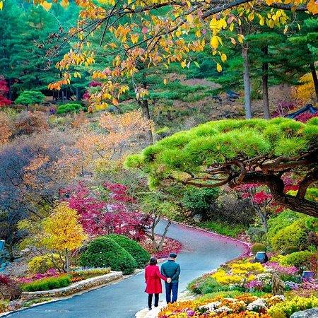 Corée du Sud: Autumn colors in Korea 🍃🍂🇰🇷 Who loves this pretty season? . IG 📷:@kyrenian .  FOLLOW👉@mustdotravels FOLLOW👉@mustdotravels FOLLOW👉@mustdotravels .  ____________________________________ 🔛TURN POST NOTIFICATIONS ON .