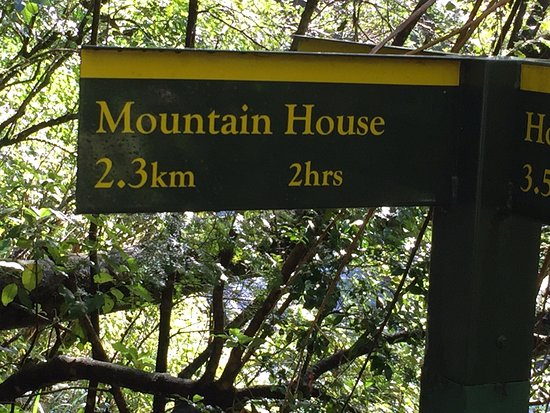 Powell Hut & Mount Holdsworth Track