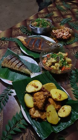 Annie prepared us a royal feast on turtle island