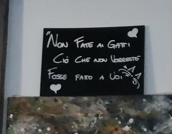Frasi Importanti Picture Of Miagola Caffe Turin Tripadvisor