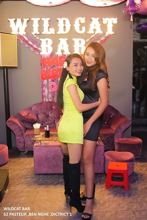 You're most welcome to to Wildcat bar anytime . We promise to give the best service that we can with all our lovely friendly ladies .  Cold beer , great cocktail , good service , play any kind of music you like , dancing with my beautiful ladies . We open since 17 : 00 untill late in the morning ..   Please drop by 62 Pasteur , District 1 , HCMC to throw the wonderful party with us ..  Btw , Wildcat hopes you have a great trip in Vietnam <3