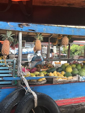 Full-Day Trip to Cai Be Village and Mekong Delta Boat Ride: Floating Market