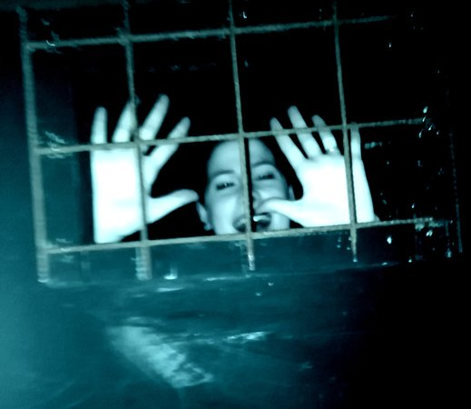 Fugacity - Escape Room