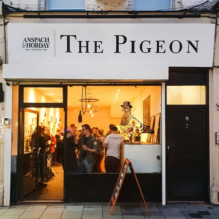 Anspach & Hobday: The Pigeon