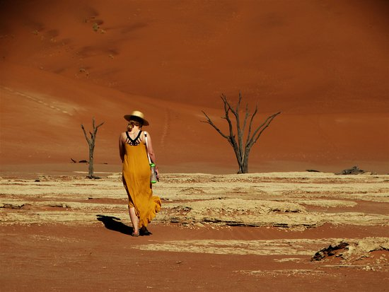 Excursion de 3 jours à Sossusvlei au départ de Windhoek : Doodvlei, Girl in yellow dress