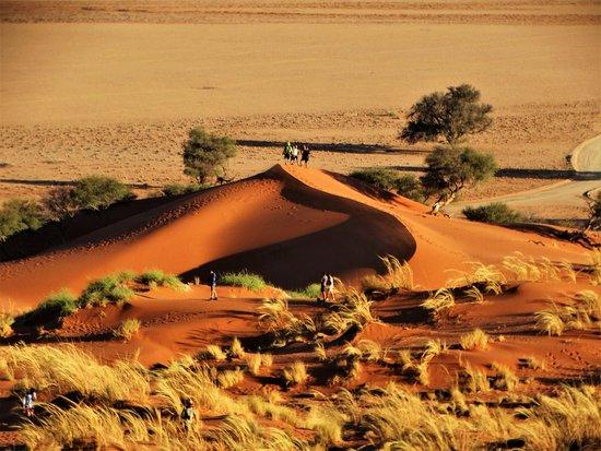 Excursion de 3 jours à Sossusvlei au départ de Windhoek : Sunset on dune Elm