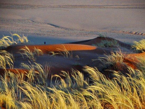 Excursion de 3 jours à Sossusvlei au départ de Windhoek : Sunset on Elm