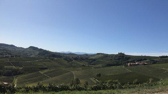 Barolo Wine Tour desde Milán: Fantastic view