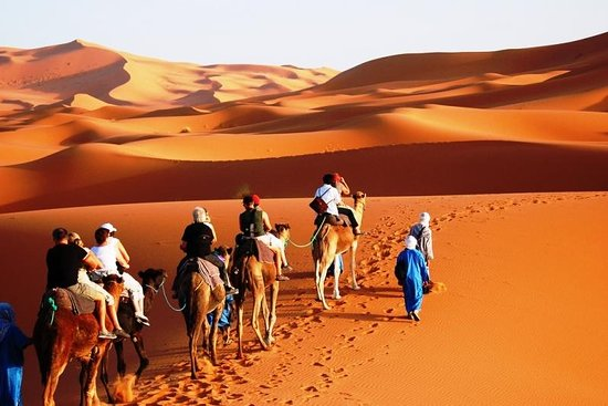 Morocco Desert Rider
